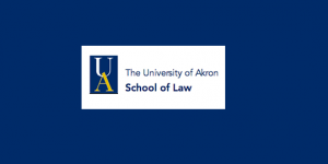 CFP: Constitutional Law Virtual Colloquium