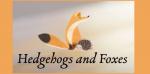 HedgehogsandFoxesOrg